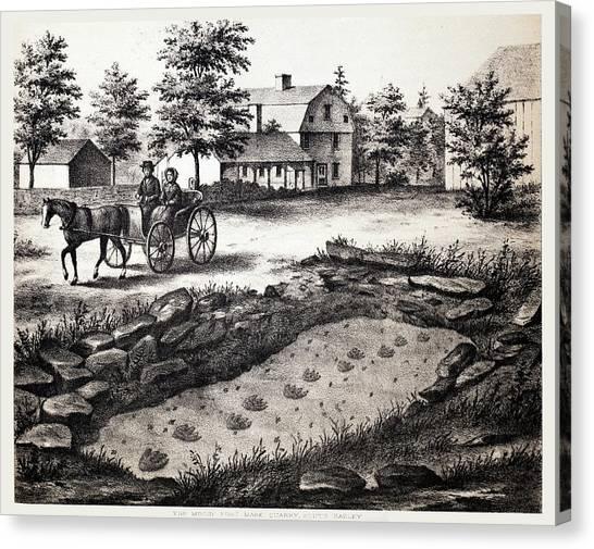 Appleton Canvas Print - First Fossil Dinosaur Tracks by Paul D Stewart