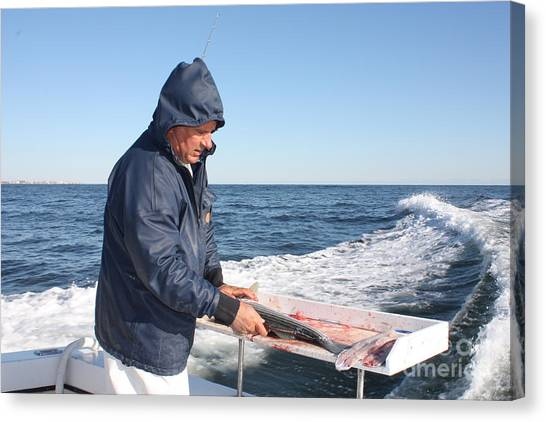 Fillet Canvas Print - First Mate Filleting Fish by John Telfer