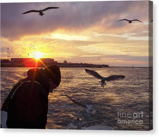 Fillet Canvas Print - First Mate Filleting Fish With Seagulls Watching by John Telfer