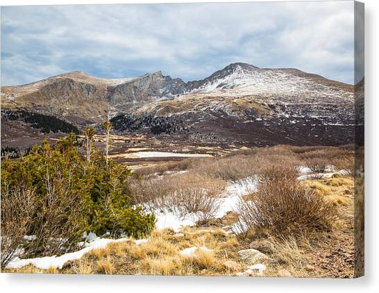 First Snow At Treeline Canvas Print