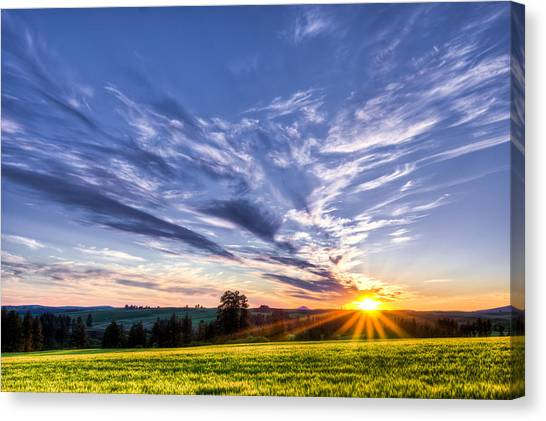 First Summer Day Canvas Print