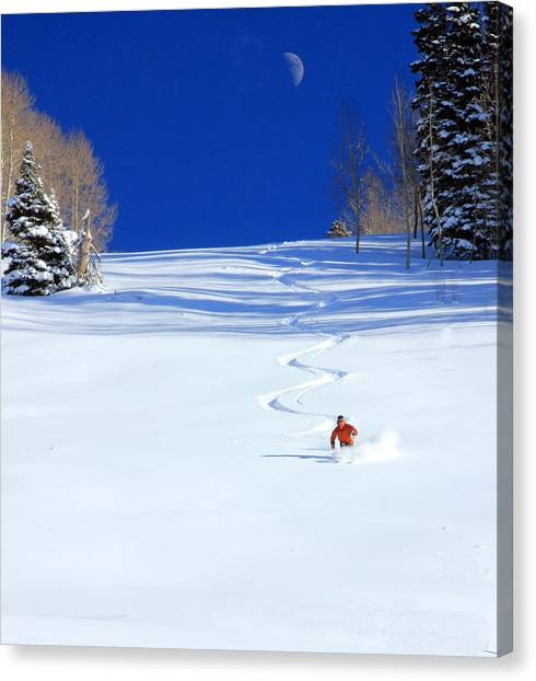 Trees In Snow Canvas Print - First Tracks by Johnny Adolphson