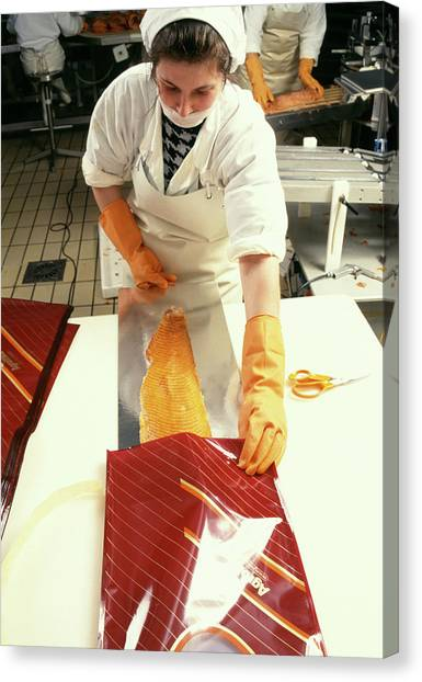 Fillet Canvas Print - Fish Being Packaged by Mauro Fermariello/science Photo Library