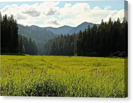 Fish Lake - Open Field Canvas Print
