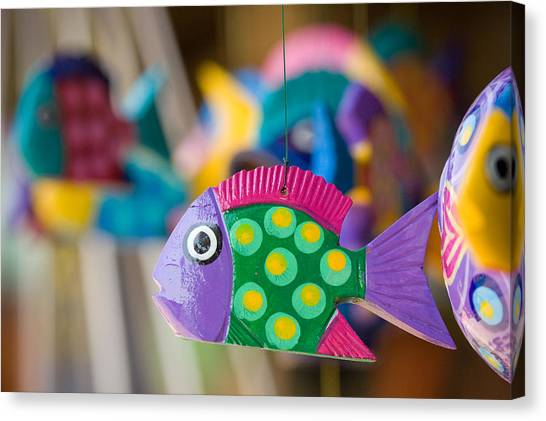 Fish Of Color Canvas Print
