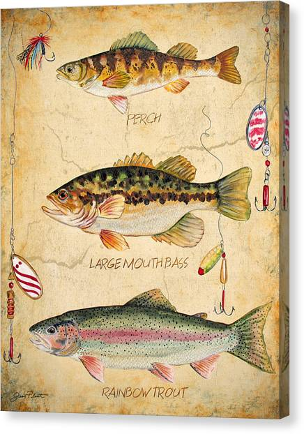 Fish Trio-b Canvas Print