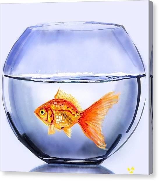 Goldfish Canvas Print - #fishbowl #fishbowlds2 #goldfishds2 by David Burles
