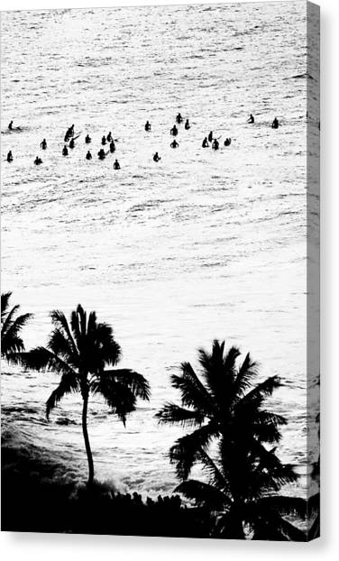 Surfing Canvas Print - Fisher Palms by Sean Davey
