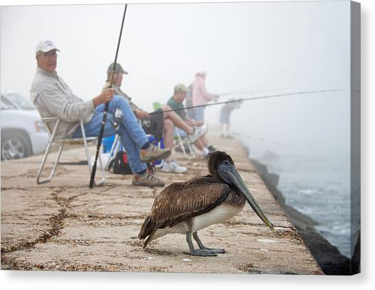 Fishing Canvas Print - Port Aransas Texas by Mary Lee Dereske
