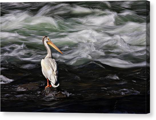 Fishing At Lehardy Rapids Canvas Print