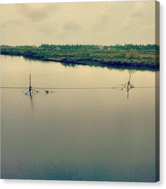 Snares Canvas Print - Fishing by Bats AboutCats