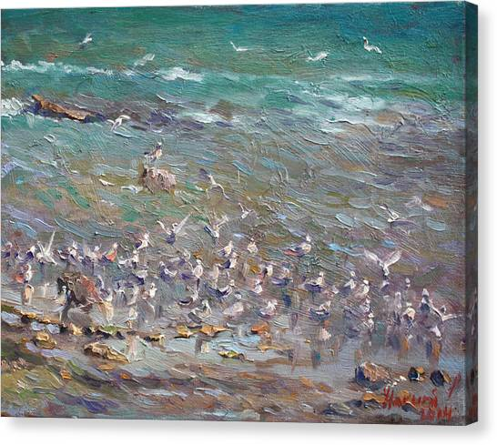 Seagulls Canvas Print - Fishing Time by Ylli Haruni