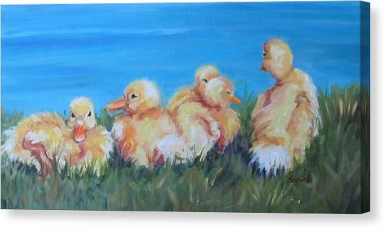 Five Ducklings Canvas Print