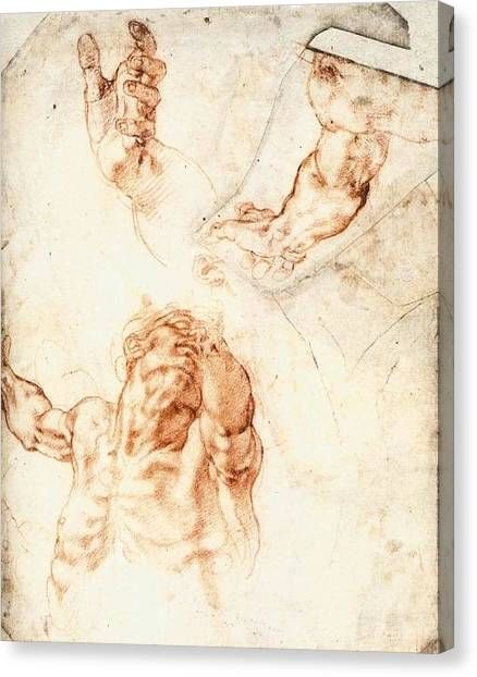 The Vatican Museum Canvas Print - Five Studies For The Figure Of Haman by Michelangelo Buonarroti
