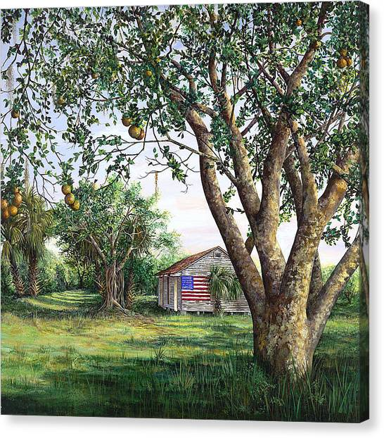 Flag House Canvas Print