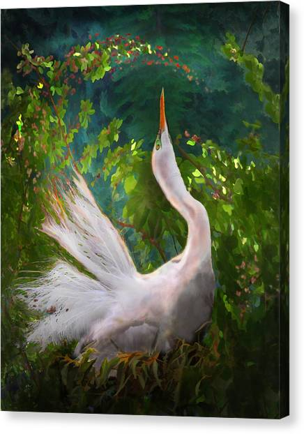 Canvas Print featuring the photograph Flamboyant Egret by Melinda Hughes-Berland