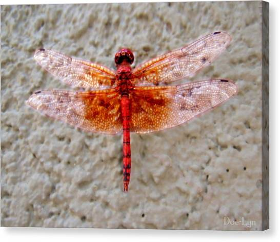 Flame Dragonfly  Canvas Print