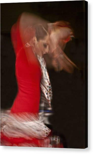Flamenco Series 3 Canvas Print