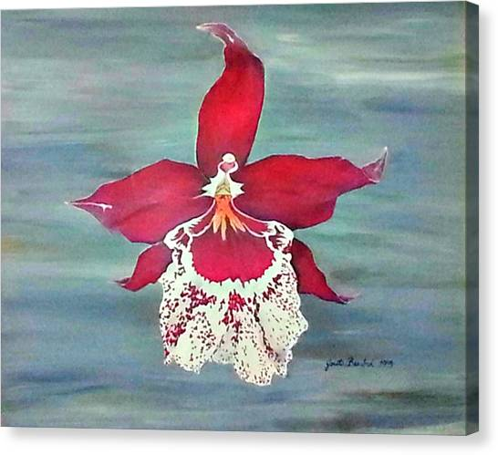 Flaming Orchid Canvas Print