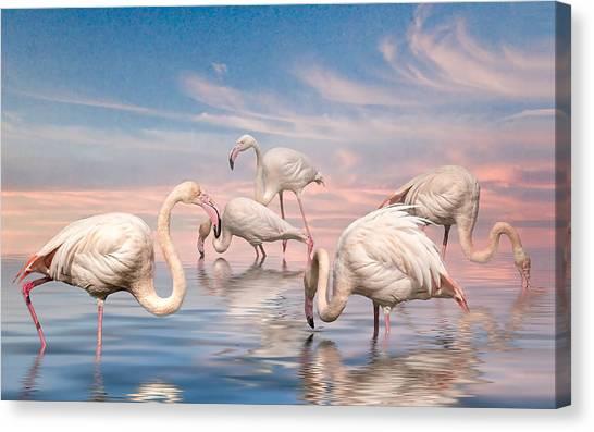 Flamingo Lagoon Canvas Print