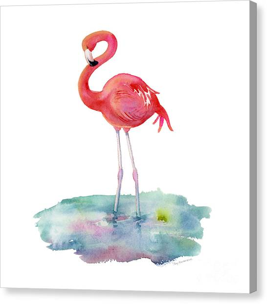 Flamingos Canvas Print - Flamingo Pose by Amy Kirkpatrick