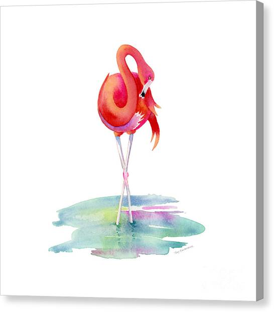 Flamingos Canvas Print - Flamingo Primp by Amy Kirkpatrick