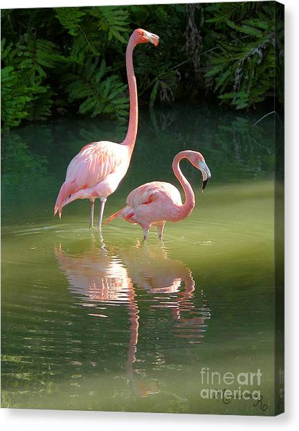 Flamingo Stroll Canvas Print