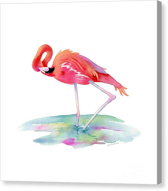 Flamingos Canvas Print - Flamingo View by Amy Kirkpatrick