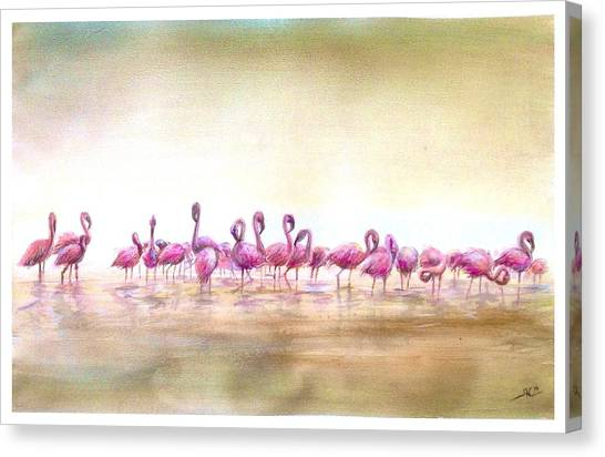 Flamingoes Land Canvas Print