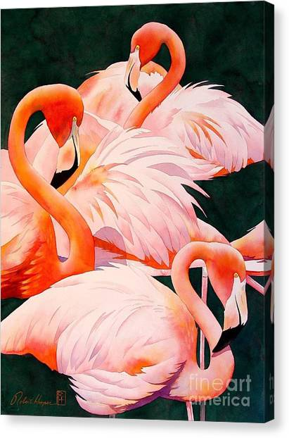 Flamingos Canvas Print - Flamingos by Robert Hooper