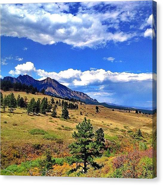 Rocky Mountains Canvas Print - Flatirons With Wildflowers by Jonathan Joslyn