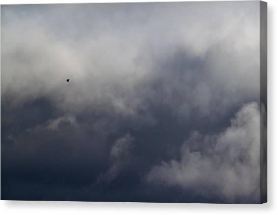 Fleeing The Storm   Canvas Print