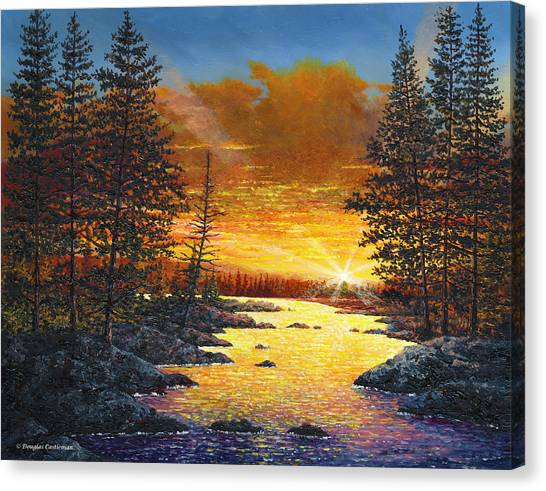 Fleeting Light Canvas Print