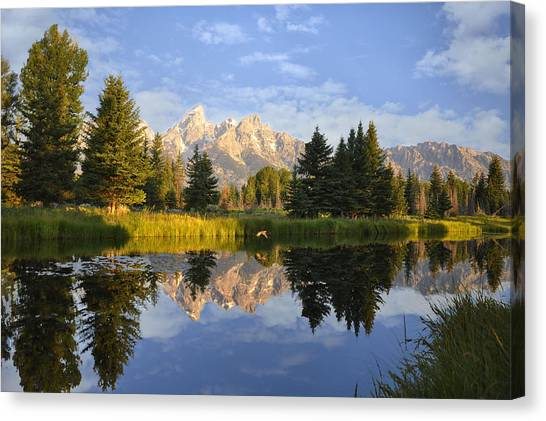 Flight In The Tetons Canvas Print
