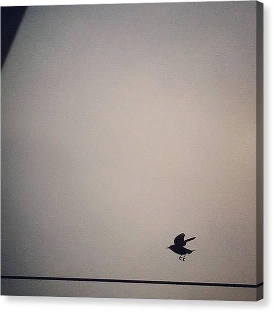 Ravens Canvas Print - Flight by Katie Cupcakes