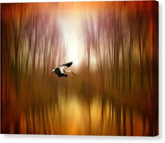 Orange Tree Canvas Print - Flight Of Fancy by Jessica Jenney