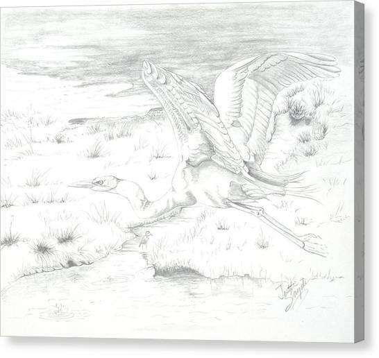 Flight Of Grace Canvas Print