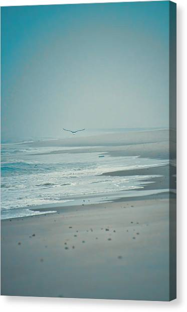 Flight Of Tranquility And Peace Canvas Print
