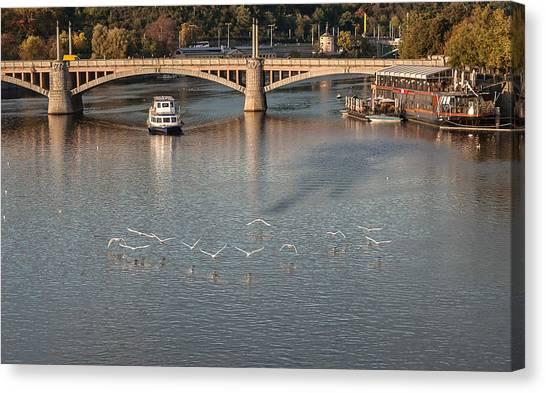 Flight Over Water Canvas Print