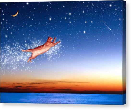 Manx Cats Canvas Print - Flight To Sagittarius by Kathleen Horner