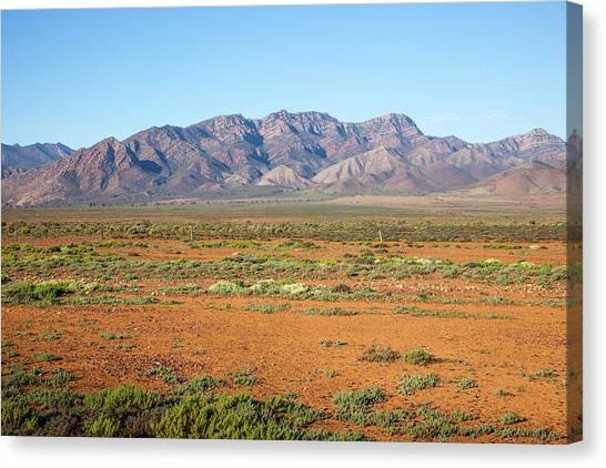 Augusta Canvas Print - Flinders Ranges, South Australia by John White Photos