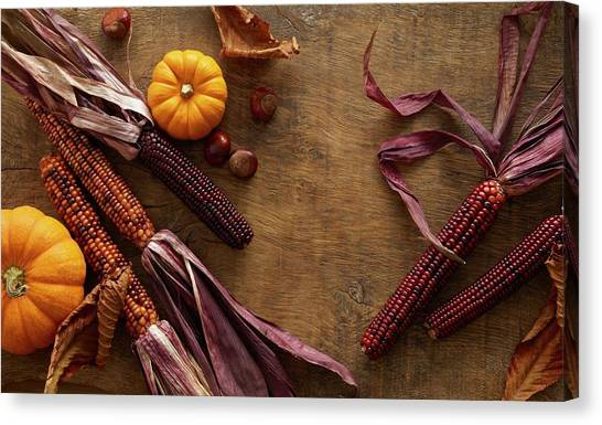 Indian Corn Canvas Print - Flint Corn And Pumpkins by Science Photo Library