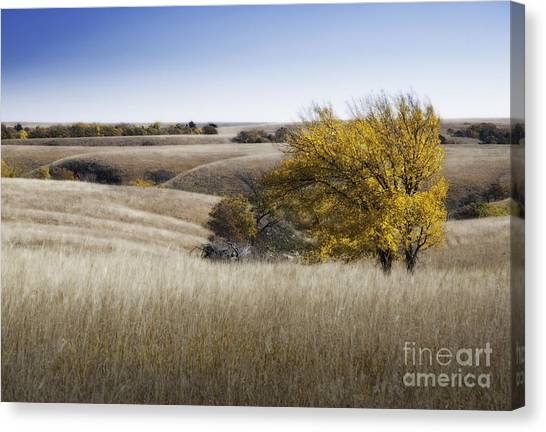 Flint Hills Autumn 013 Canvas Print