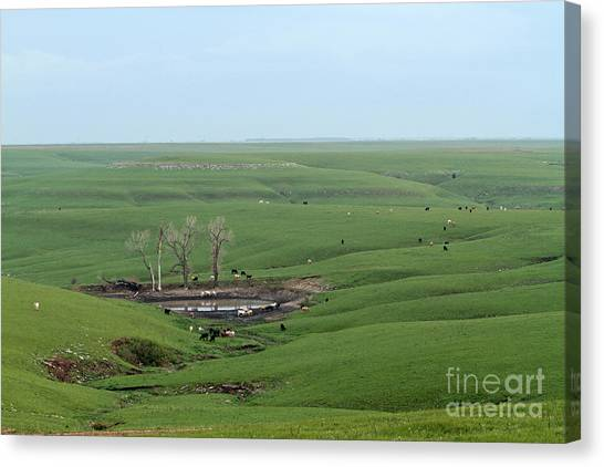 Flint Hills Ranch Canvas Print