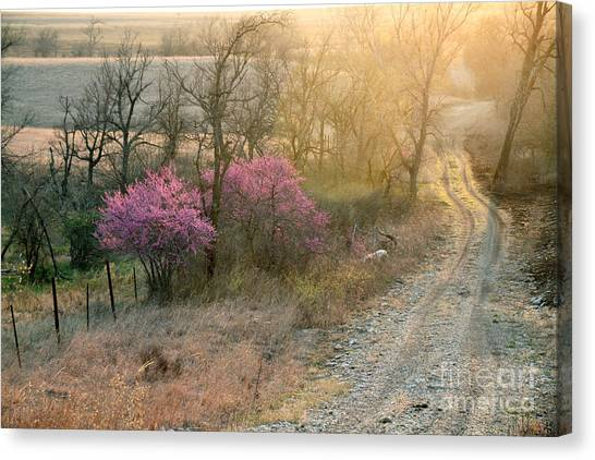 Flint Hills Spring Canvas Print