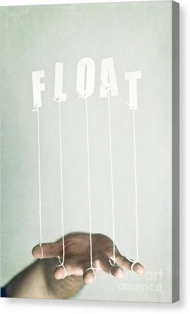 Float Canvas Print by Catherine MacBride