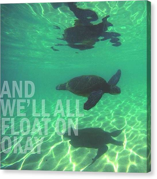 Sea Turtles Canvas Print - Float On by Brandon Weller