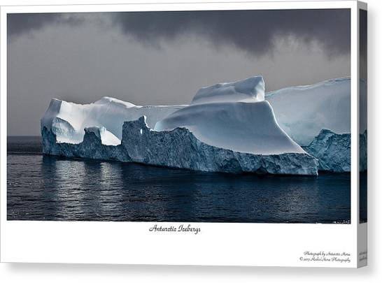 Floating Giants 2 Canvas Print by David Barringhaus