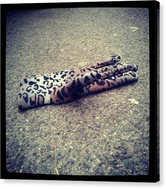 Gloves Canvas Print - #floor #street #glove #single #leopard by Christelle Vaillant