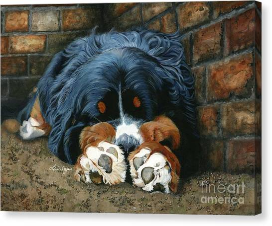 Bernese Mountain Dogs Canvas Print - Flop Those Lips Fast Asleep Extra Ventilation by Liane Weyers